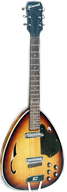 Coral Teardrop Guitar Front and Back